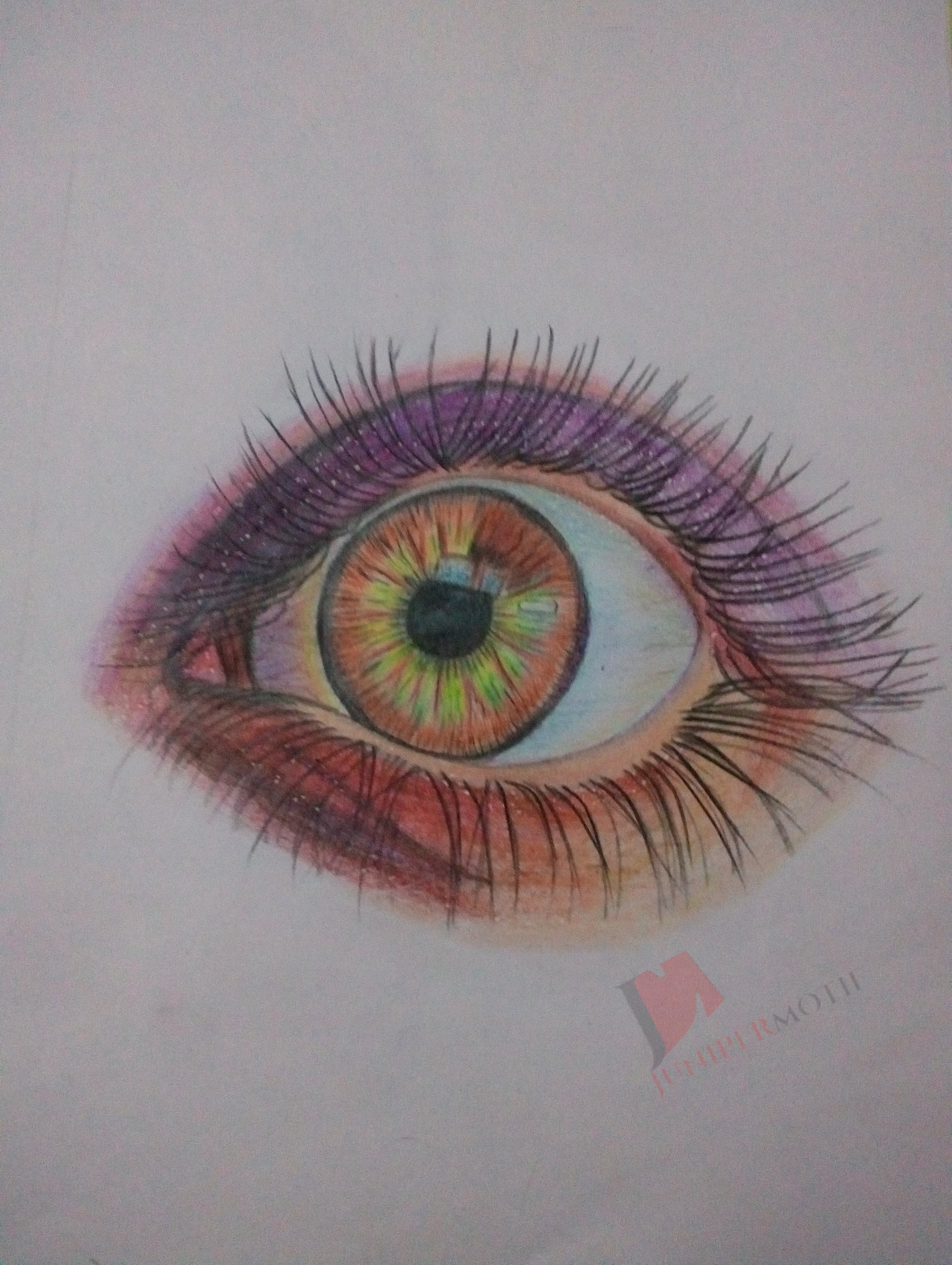 stunning eye of a lady color pencil drawing